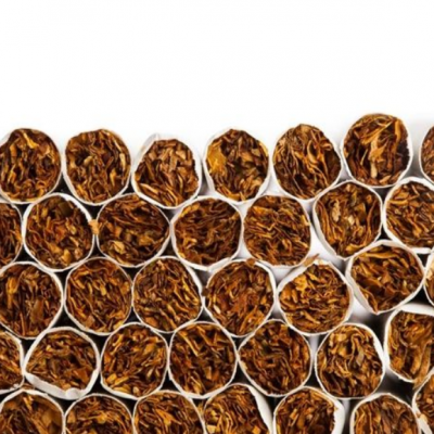 thomson直线运动单元,让香烟生产环节更简单!
